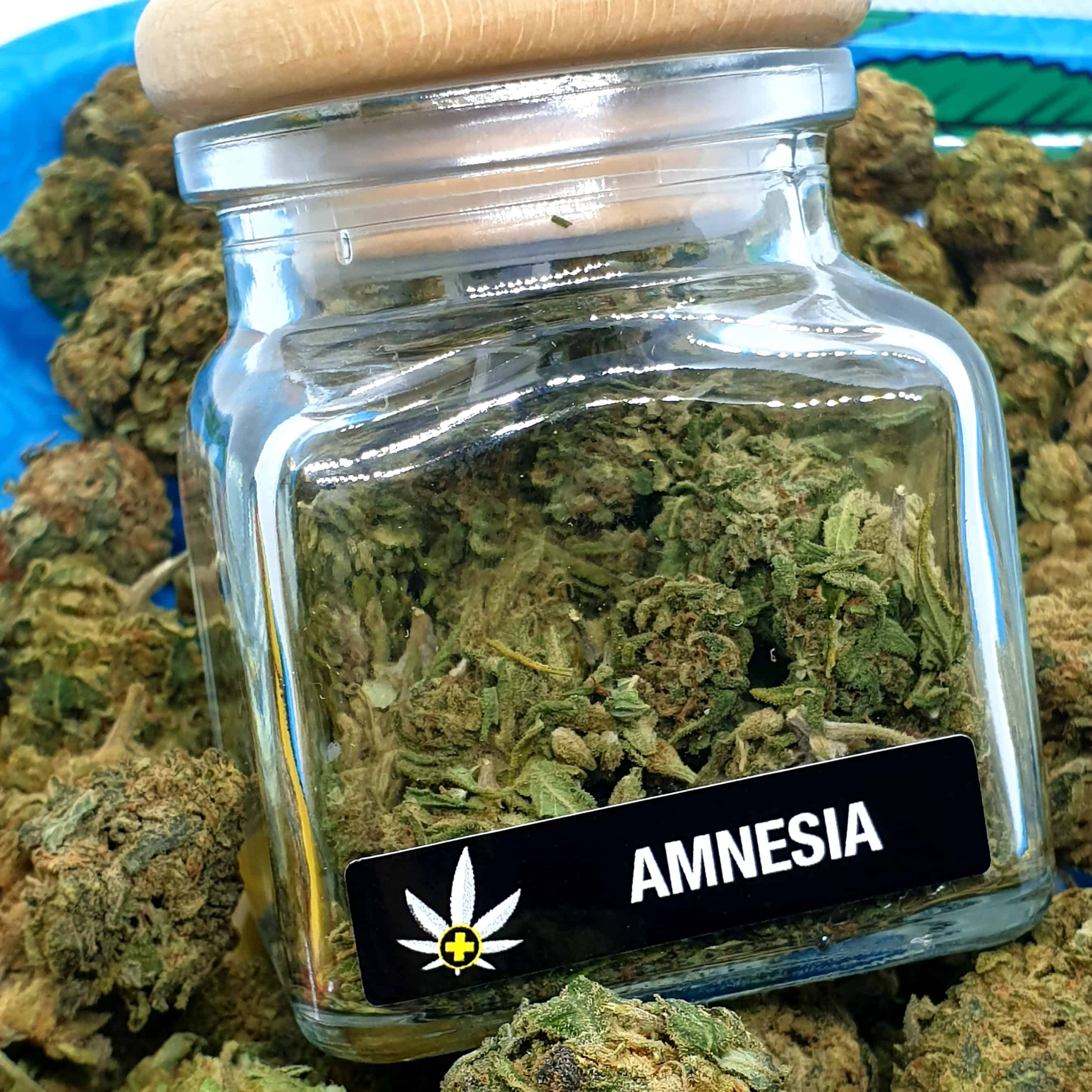 Image of AMNESIA CBD SUSZ KONOPI - 5 gram